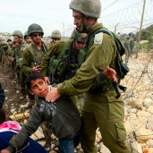 Defence for Children International-Palestine
