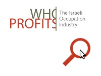 WHO PROFITS - JANUARY 2013 NEWSLETTER